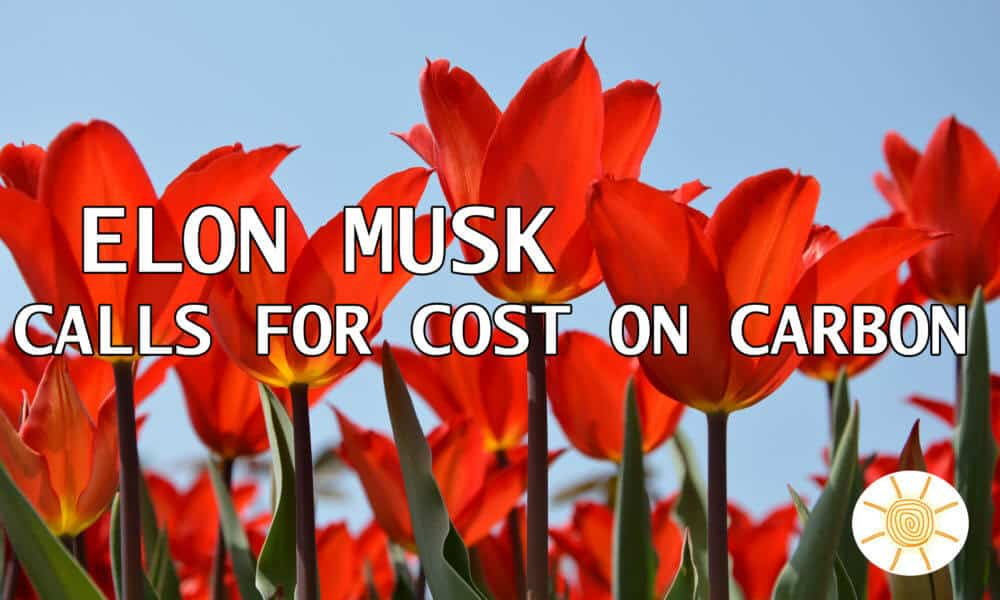 Elon Musk Calls for a Cost on Carbon