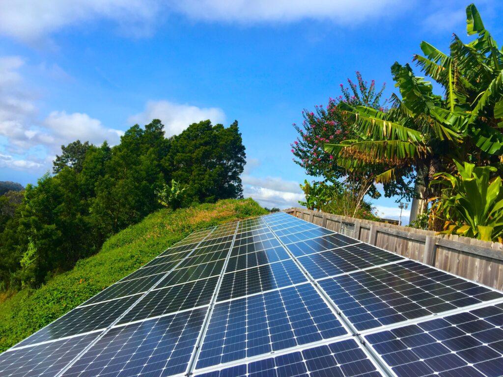 solar panels save money hawaii